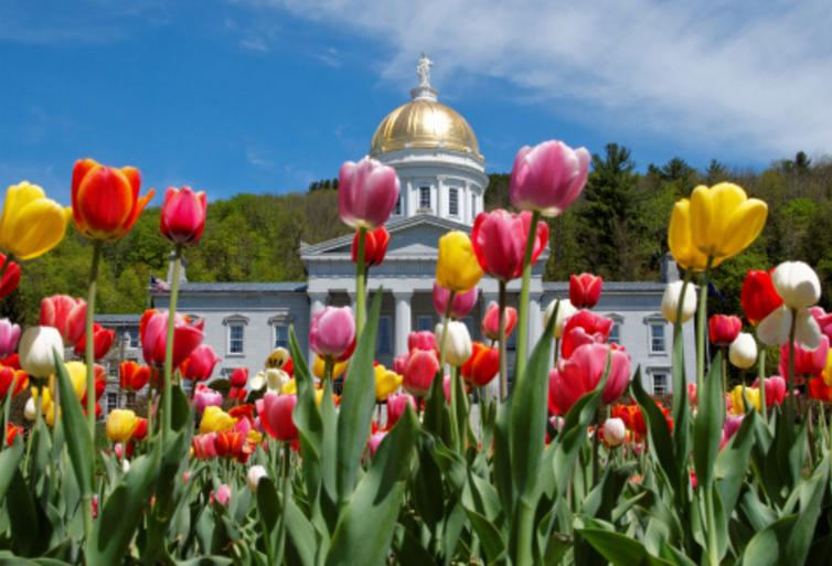 Vermont spring