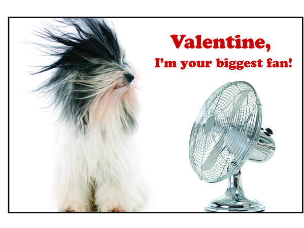Valentines Day Card_biggest fan-1